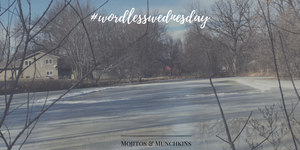 Wordless Wednesday: Thawing Minnesota