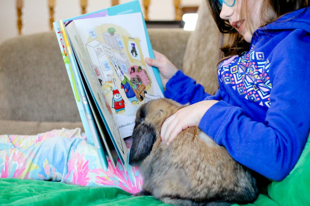 win-bunny-staycation-book