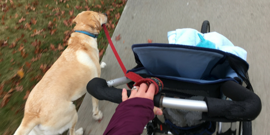 8 Reasons I Run with My One-Year Old