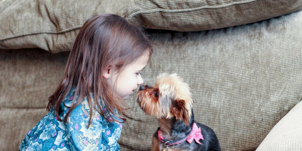 Everything You Should Do Before Buying Your Child A Pet
