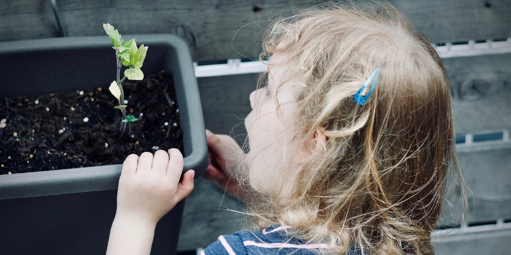 3 Tips For an Edible Garden with Your Child