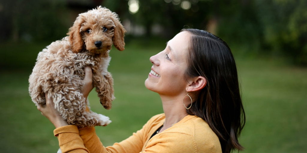 4 Tips to Understanding Your Dog's Happiness